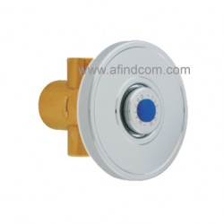 Urinal flush valve with wall plate